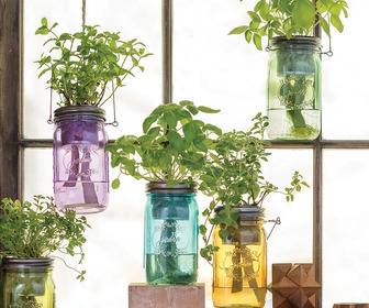 Self-Watering Mason Jar Indoor Herb Garden