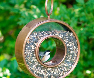 Shelby Fly-Through Bird Feeder