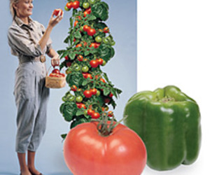 Space Age Bell Pepper or Tomato Plant Kit