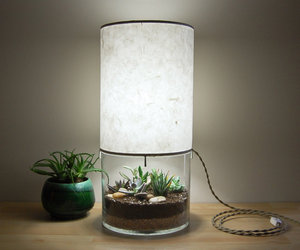 Terrarium / Display Table Lamp
