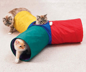 Three Way Cat Tunnel