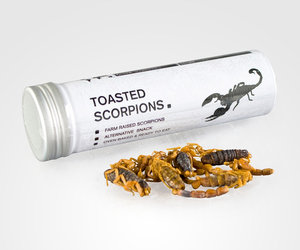 Toasted Scorpions