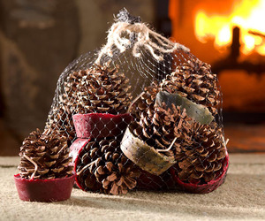 Wax-Bottom Pine Cone Fire Starters