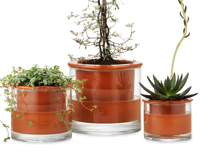 Wet Pots - Self-Watering Terracotta Pots