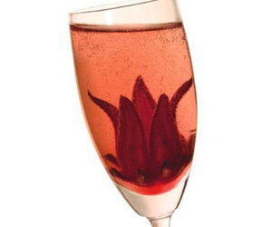 Wild Hibiscus Flowers in Syrup - Bloom in Champagne Bubbles