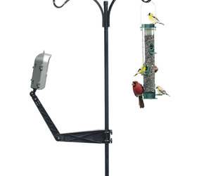 Wingscapes BirdCam - Motion-Activated Outdoor Wildlife Camera
