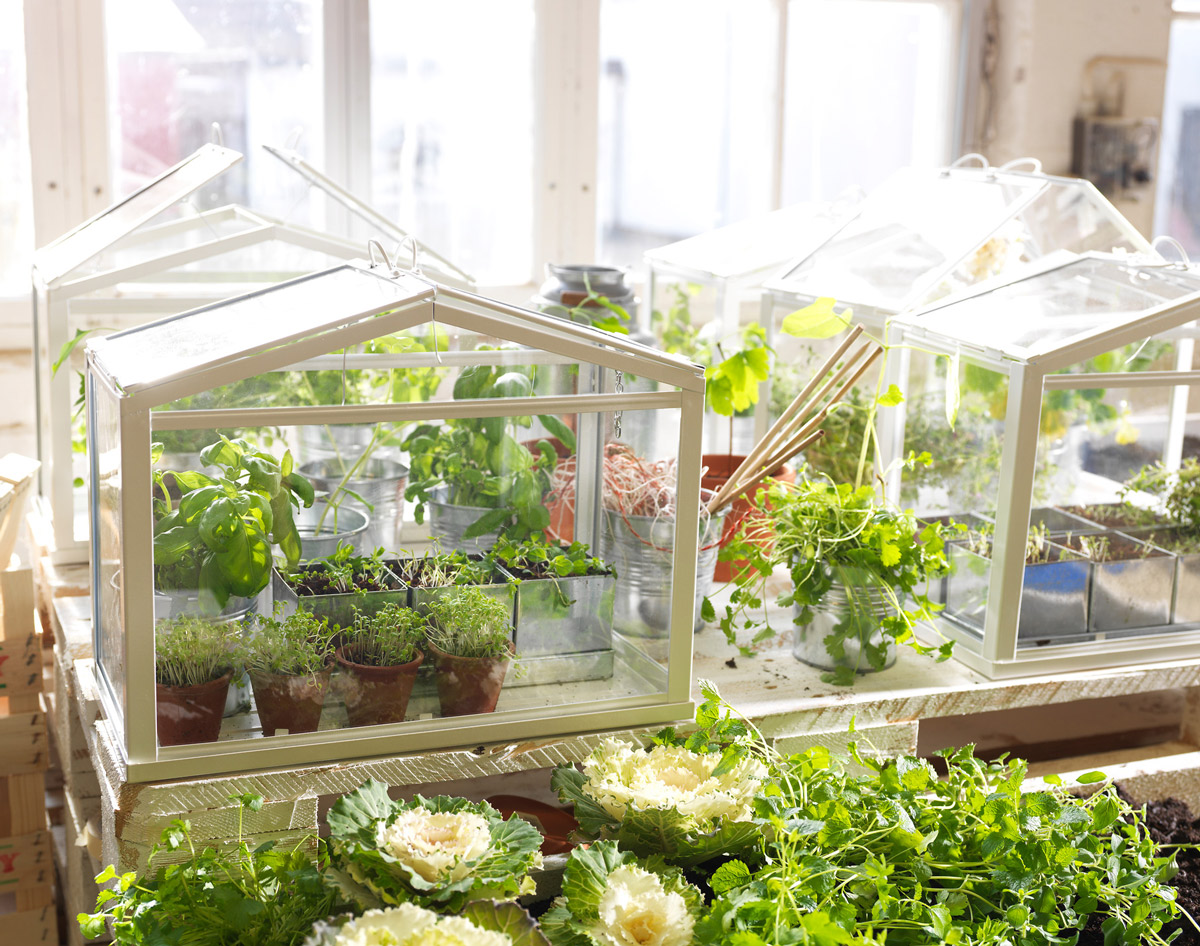 how to make a small indoor greenhouse