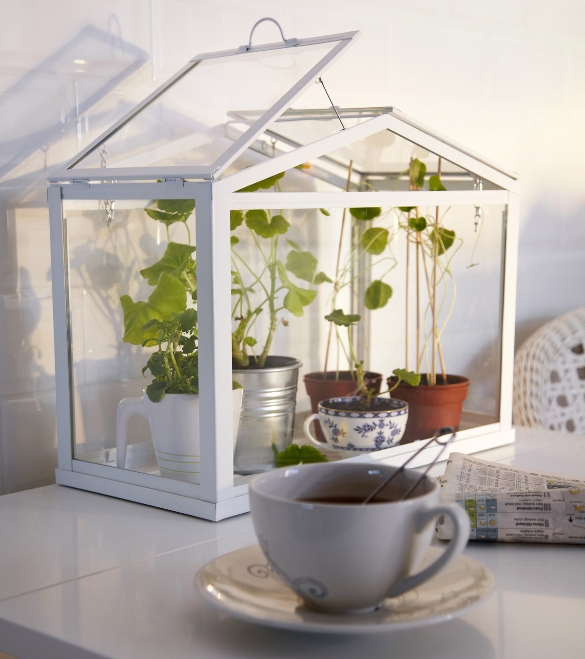 ikea socker indoor miniature greenhouse the green head. Black Bedroom Furniture Sets. Home Design Ideas