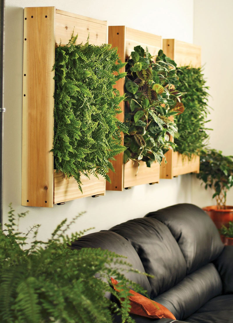 Living Wall Planter indoor living wall planters - the green head