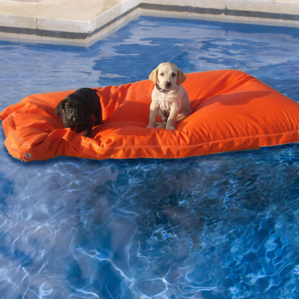 Kai Pet Pool Floats - The Green Head