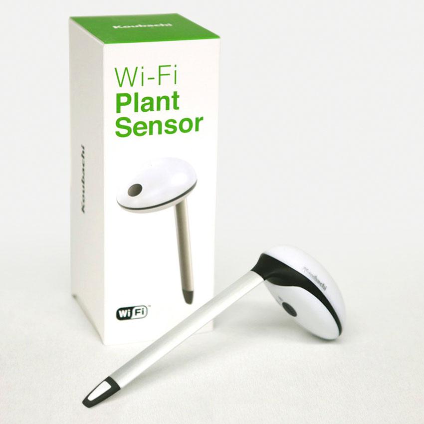 Koubachi wi fi plant sensor the green head - Monitor your indoor plants with the koubashi wi fi sensor ...