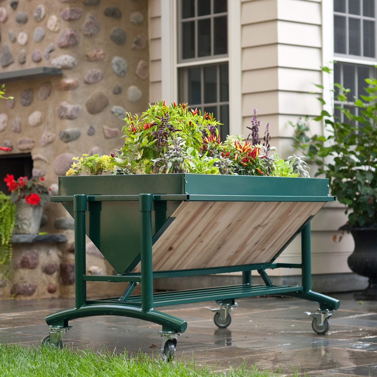 Great LGarden   Elevated Gardening System