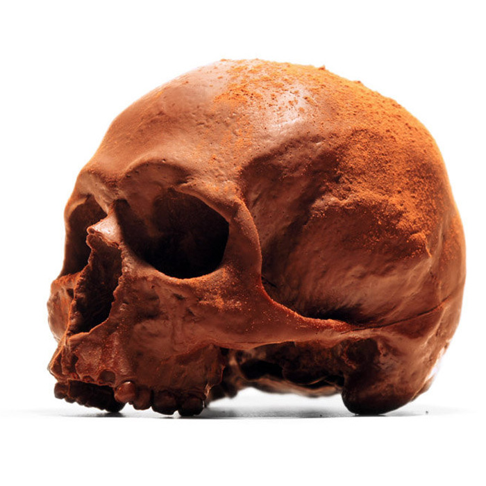 Lifesize Anatomically Correct 100% Chocolate Human Skulls - The ...