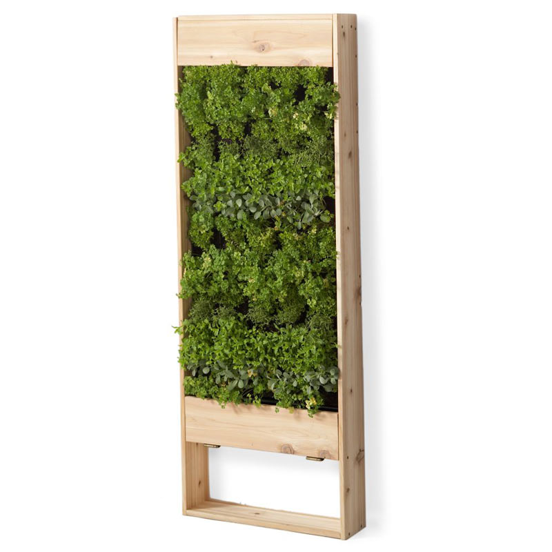 High Quality Living Wall Planter   Large Vertical Garden   The Green Head