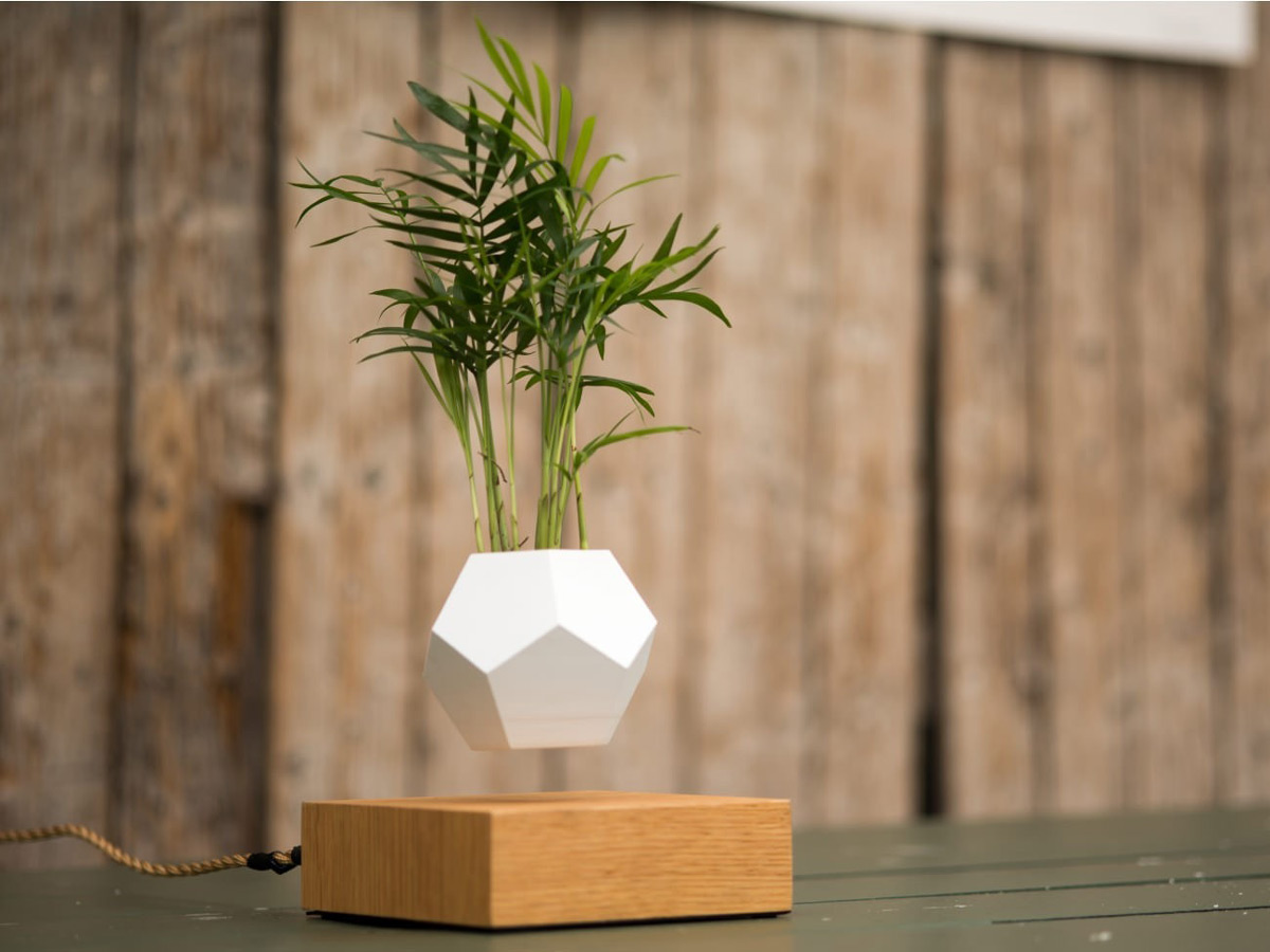 Lyfe Zero-gravity Planter - Levitates Plants In Mid-air
