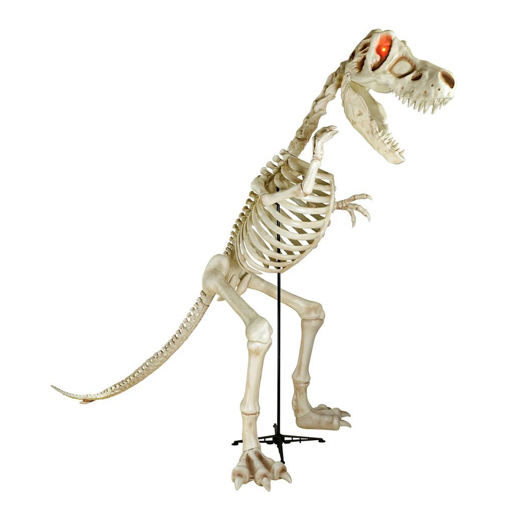 "characteristics of tyrannosaurus rex Sue the t rex doesn't move much the self-described ""cursed/enchanted  dinosaur corpse"" spent about 67 million years buried in a."