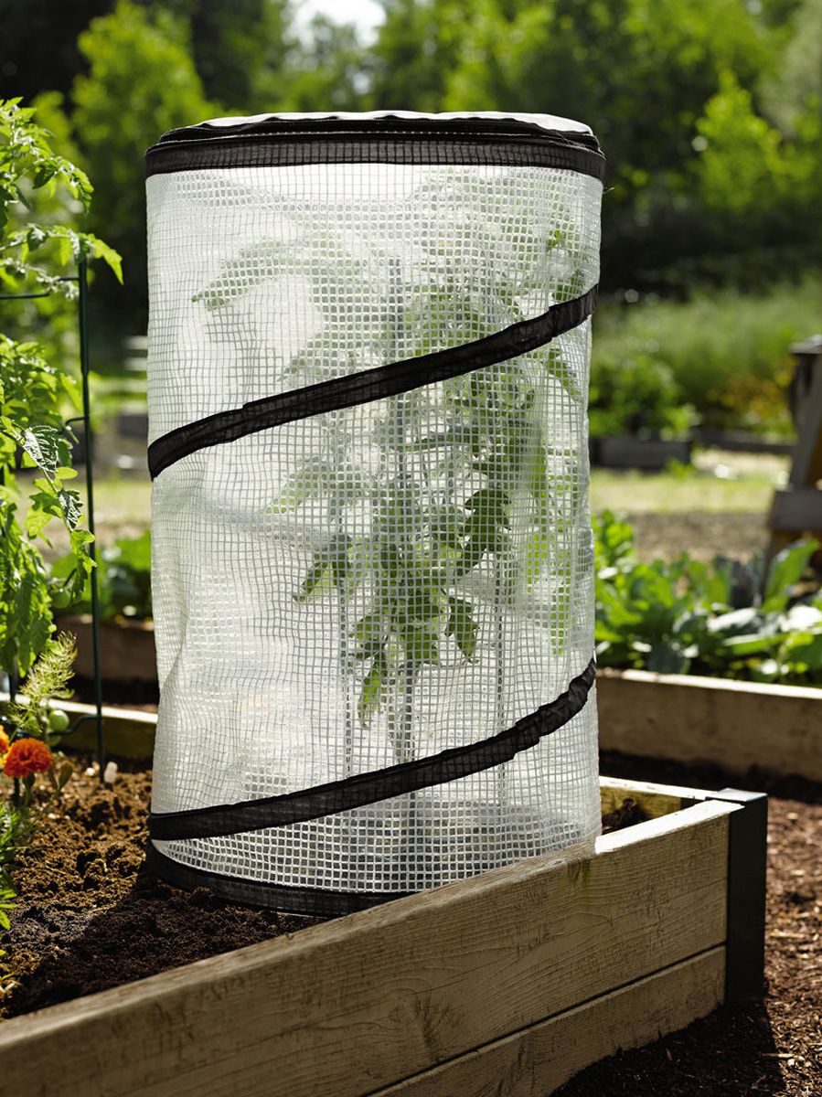 Miniature Pop Up Tomato Pepper Greenhouse