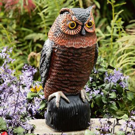 Motion Sensing Owl   Bird And Pest Control