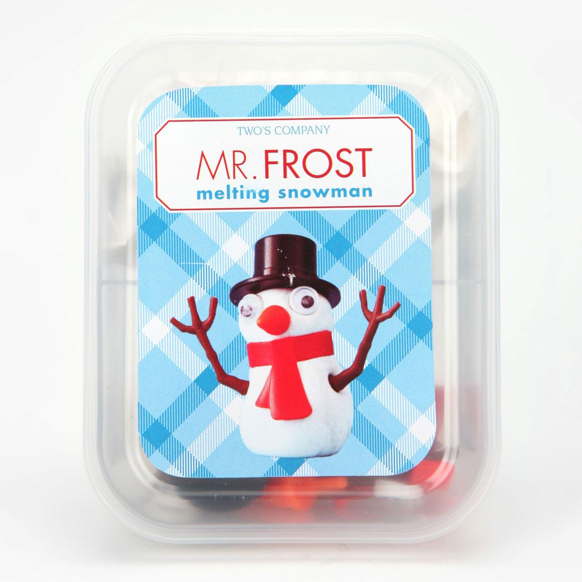 Mr Frost Melting Snowman Kit
