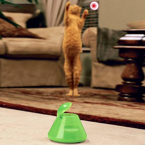 Illuminated Cat Toy