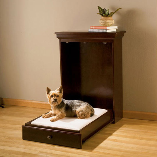 Murphy Bed Just For Pets The Green Head