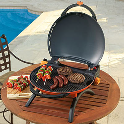 O Grill Portable Propane Grill The Green Head