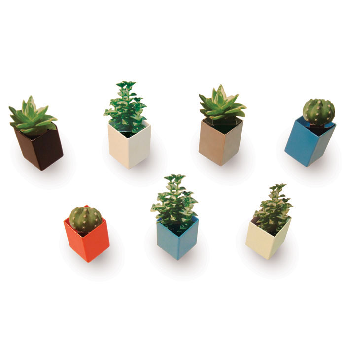 off the wall mini flower pots the green head. Black Bedroom Furniture Sets. Home Design Ideas