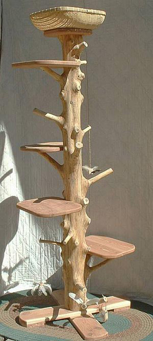 one of a kind natural cedar cat climbing tree the green head. Black Bedroom Furniture Sets. Home Design Ideas