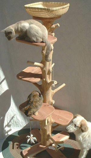 One Of A Kind Natural Cedar Cat Climbing Tree