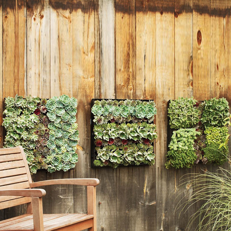 outdoor living wall planters. Black Bedroom Furniture Sets. Home Design Ideas