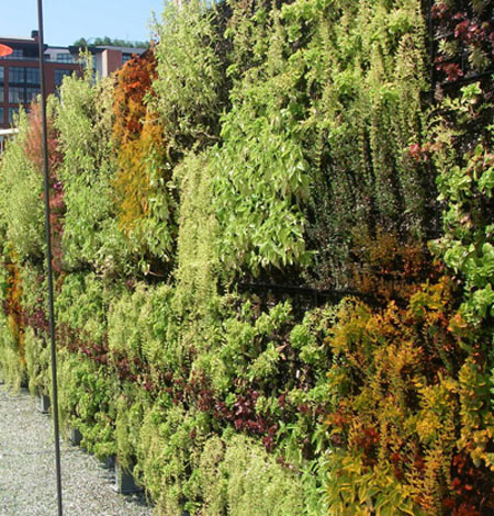 Outdoor Living Wall Images 2