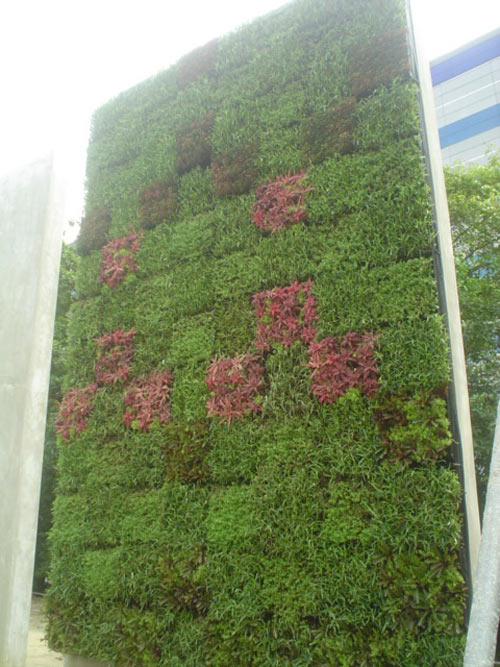 Outdoor Living Wall Planters - Outdoor Living Wall Planters - The Green Head