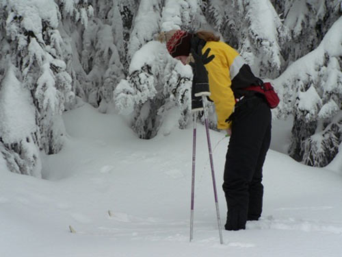Business! Nice pee when skiing