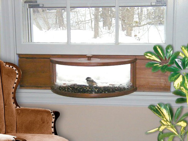 Panoramic In House Window Bird Feeder With One Way Mirror