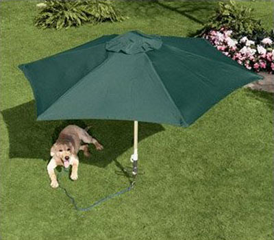 Petbrella Pet Umbrella Amp Tie Out Stake The Green Head