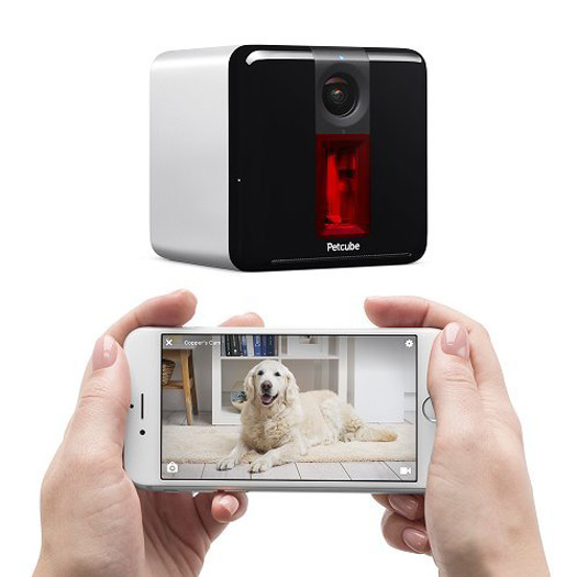 Beyond Cat Food >> Petcube Play - Interactive HD Pet Video Camera With Built-in Laser Toy