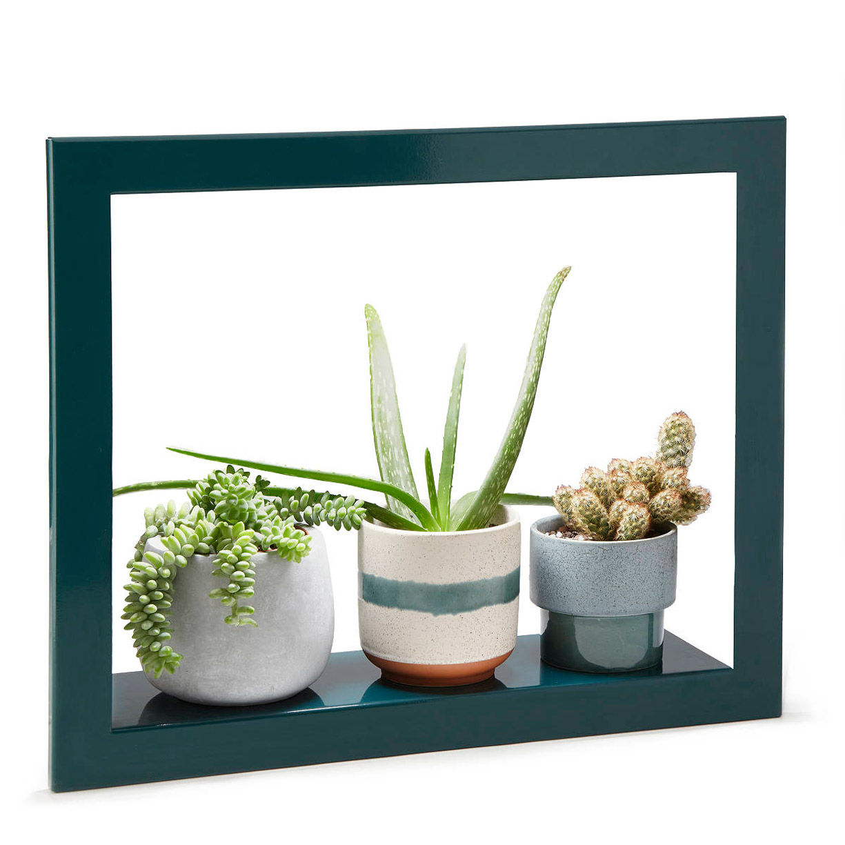 Plant Grow Light Picture Frame Shelf