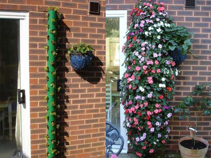Vertical Garden Watering
