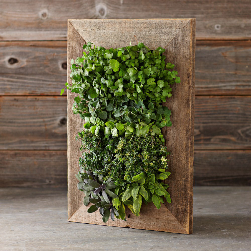 living wall planter reclaimed barn door vertical wall planter the green 31079
