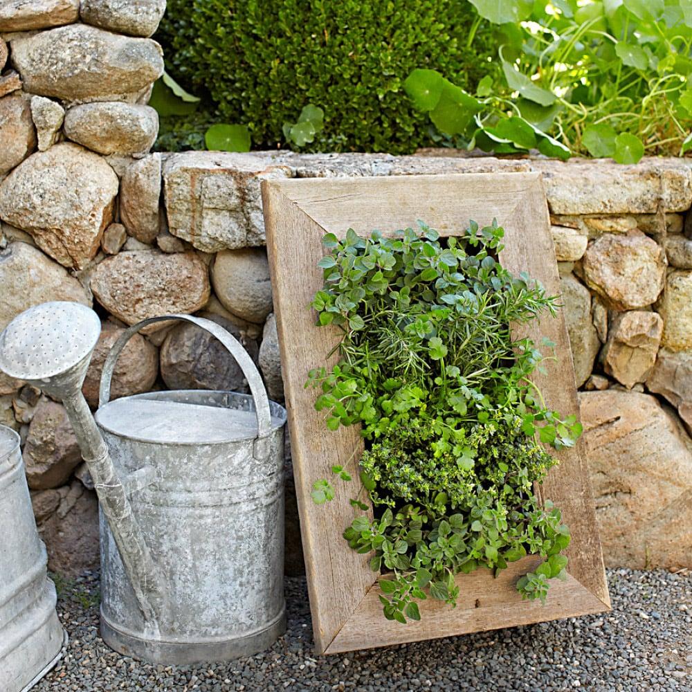Reclaimed Barn Door Vertical Wall Planter The Green Head