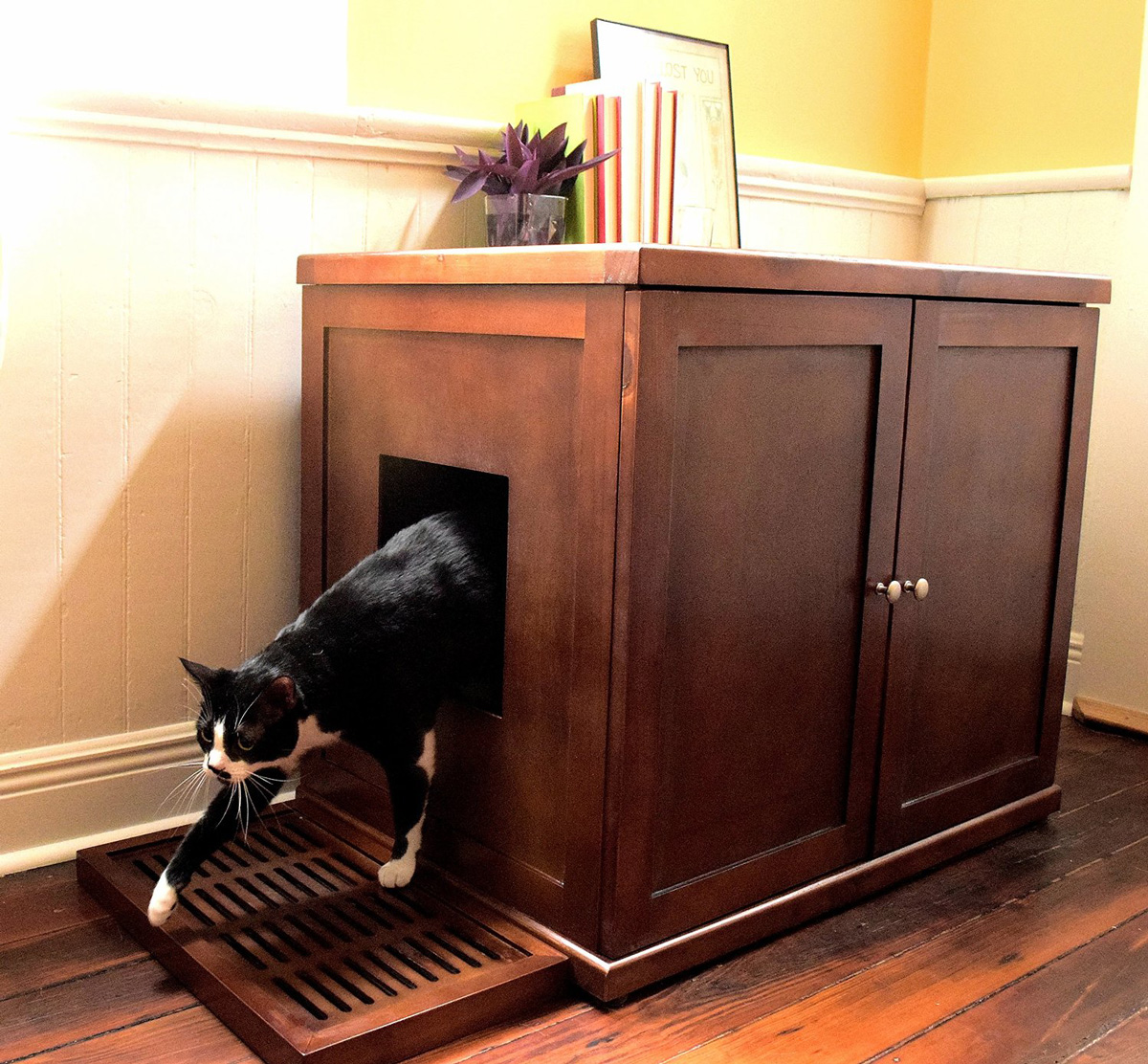 Hidden Furniture Cat Box