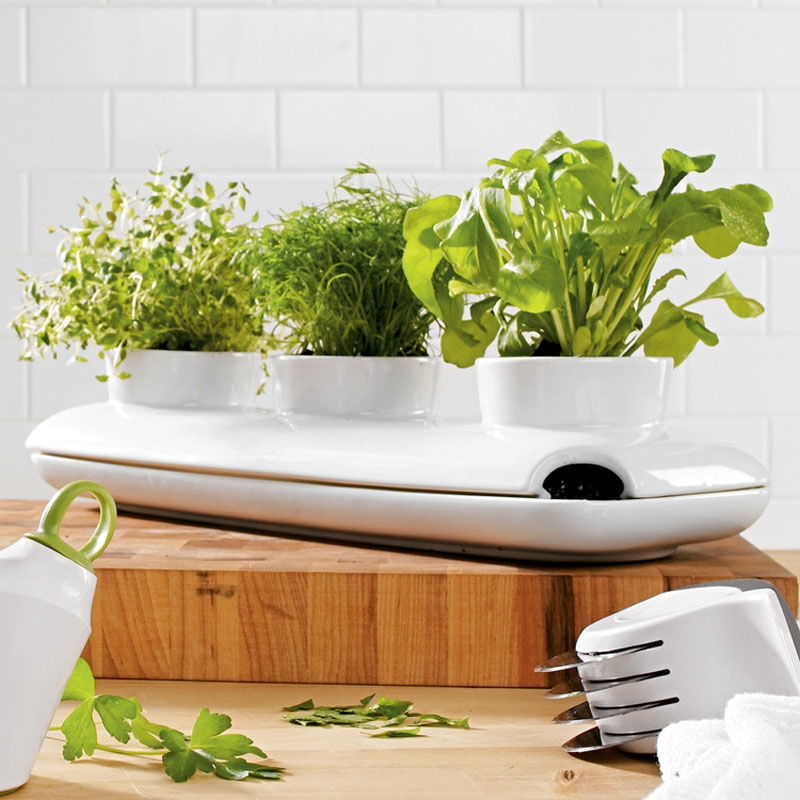 Kitchen Herb Garden Indoor: Sagaform Stoneware Triple Herb Pot