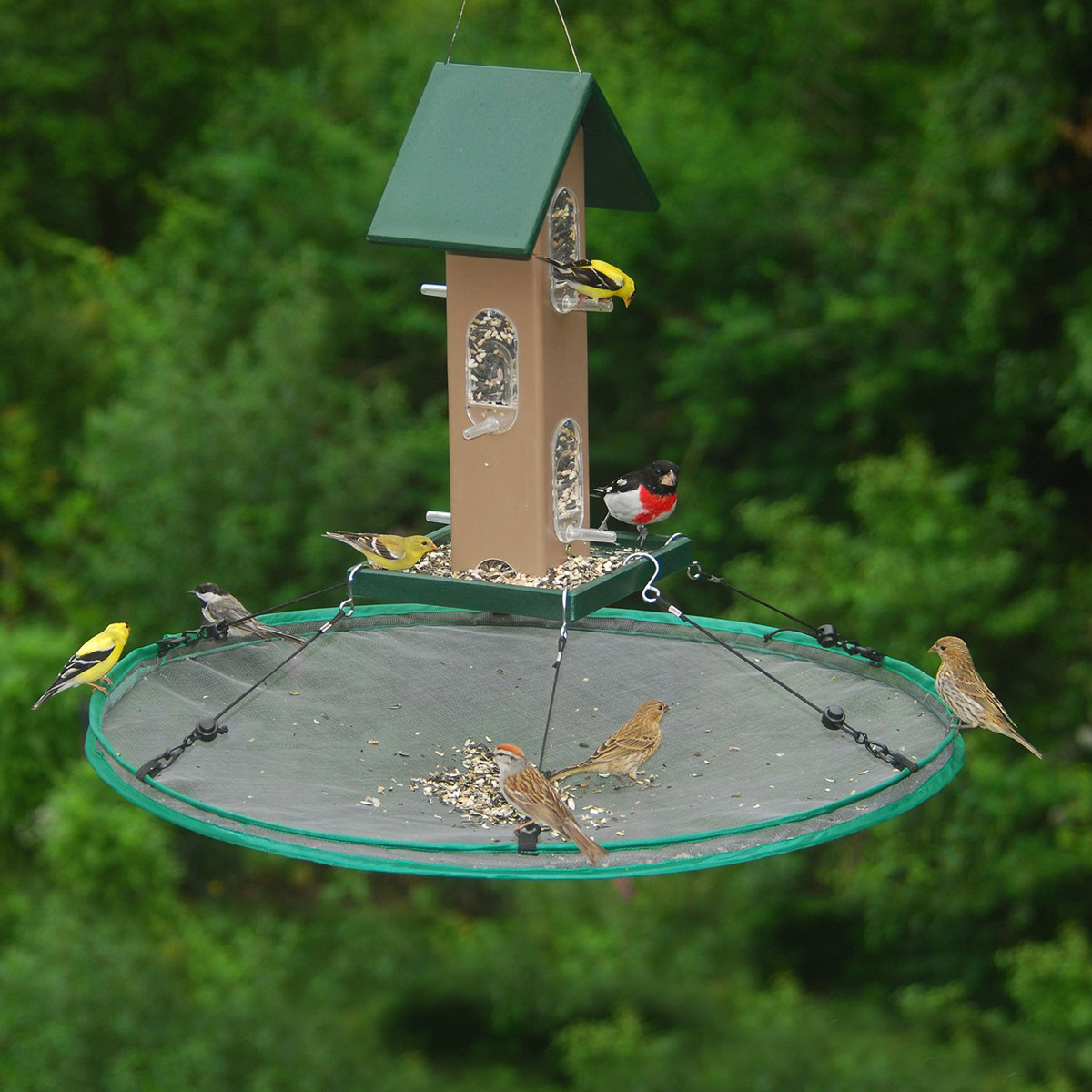 Seed Hoop Bird Feeder Seed Catcher The Green Head