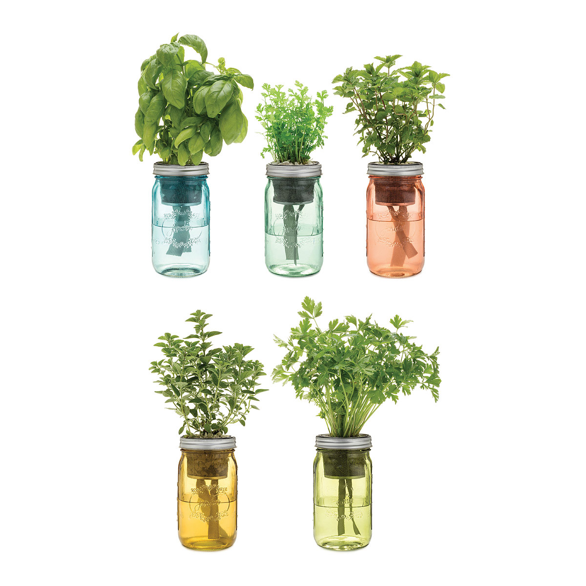 Self Watering Indoor Planters Part - 37: Self-Watering Mason Jar Indoor Herb Garden
