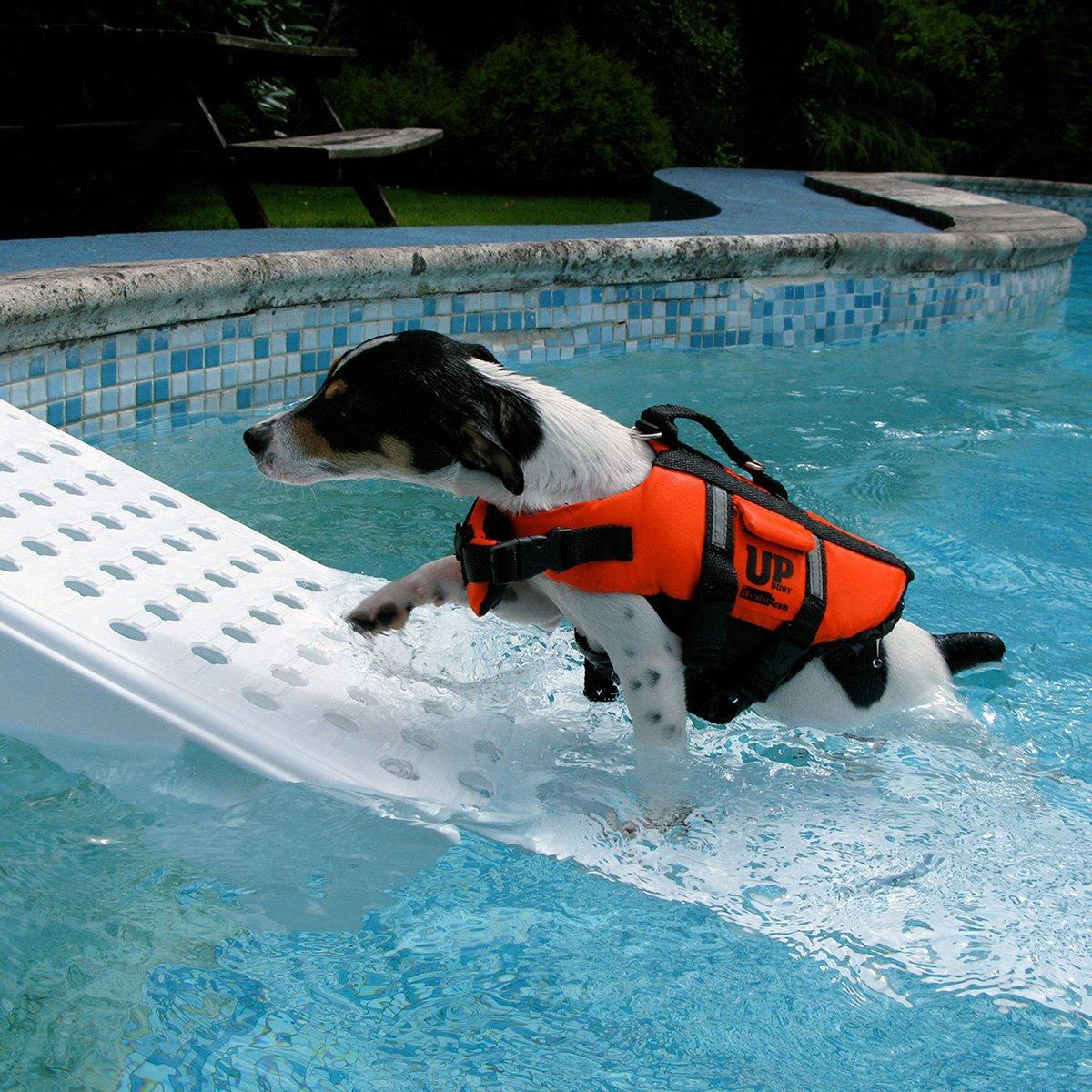 Skamper Ramp Swimming Pool Pet Ramp The Green Head