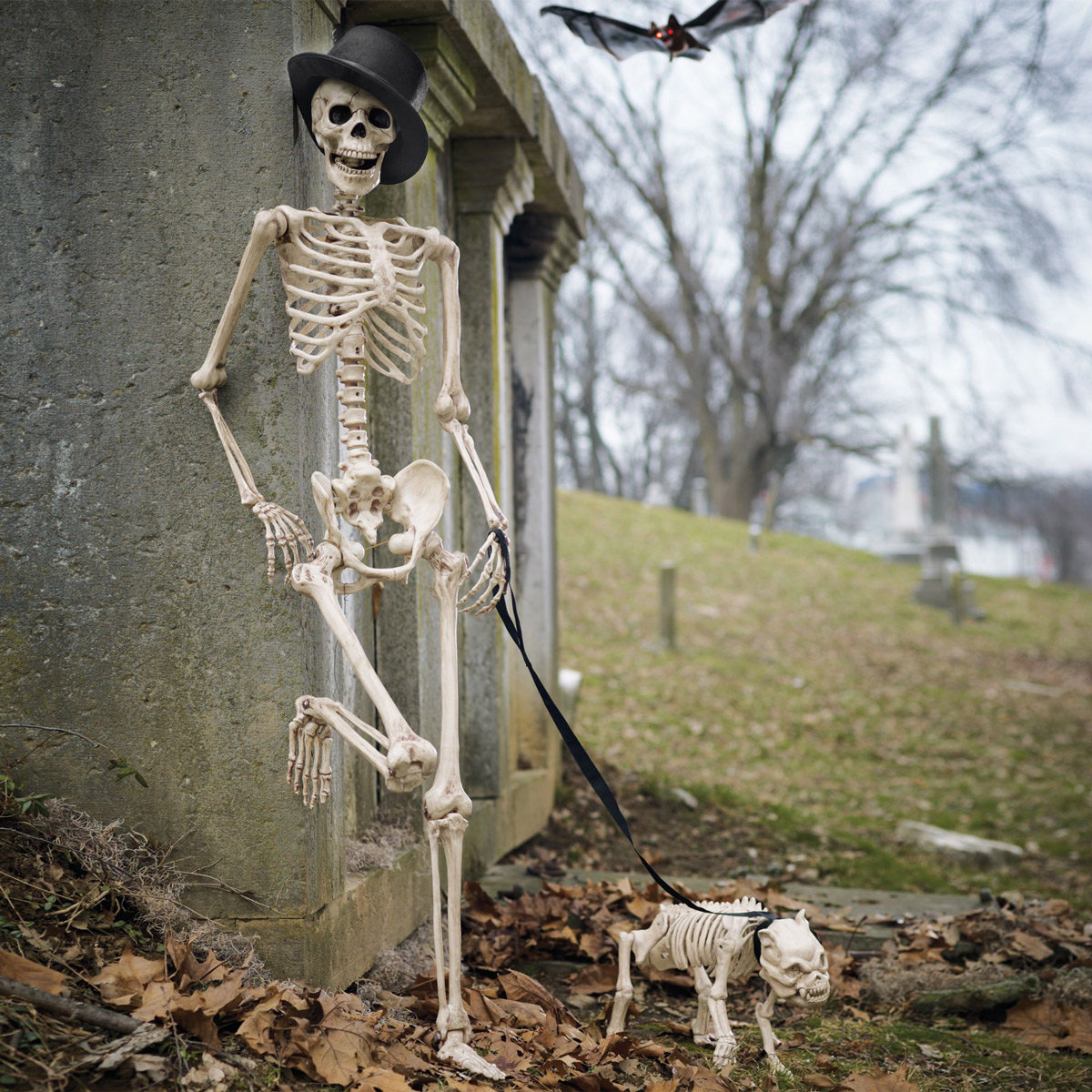 [Image: skeleton-dog-on-leash-3.jpg]