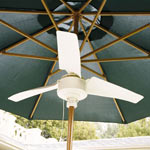 Summer Blast Umbrella Fan