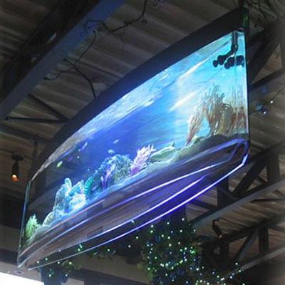 Spacearium - Elliptical Suspended Aquariums