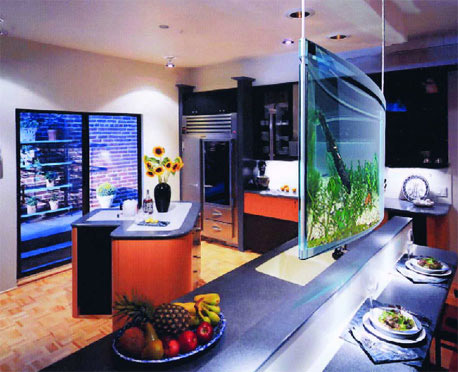 Spacearium elliptical suspended aquariums the green head Beautiful aquariums for home