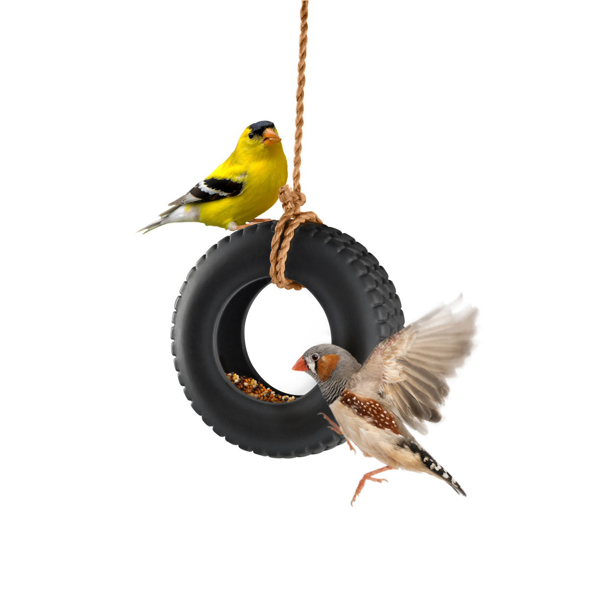swingtime ceramic tire swing bird feeder the green head